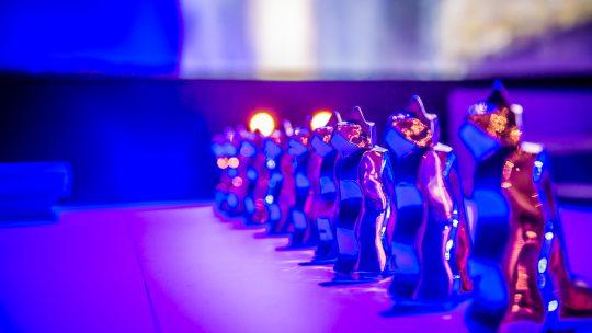 Récompenses festival du court métrage (Vercingétorix)