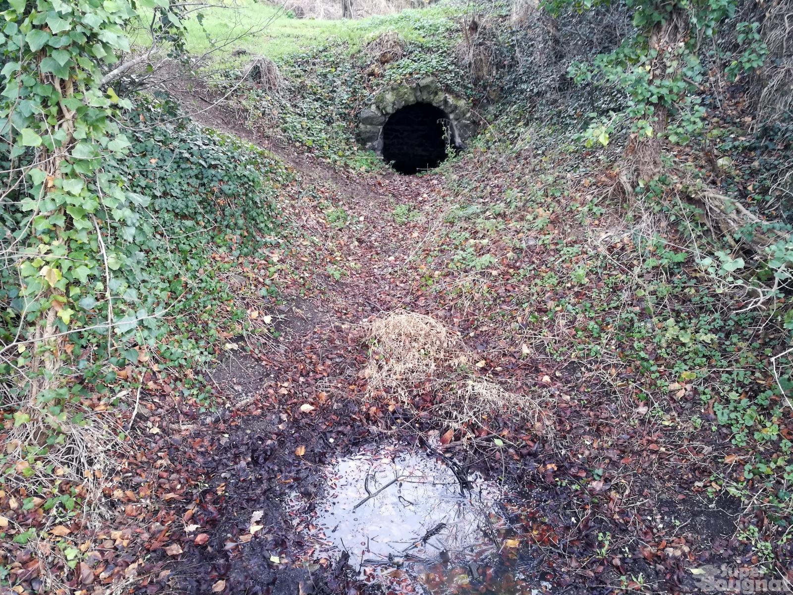 Source du Puy de la Poix